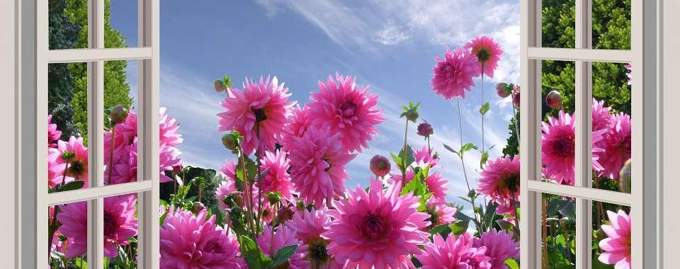 花てらす療院メイン画像